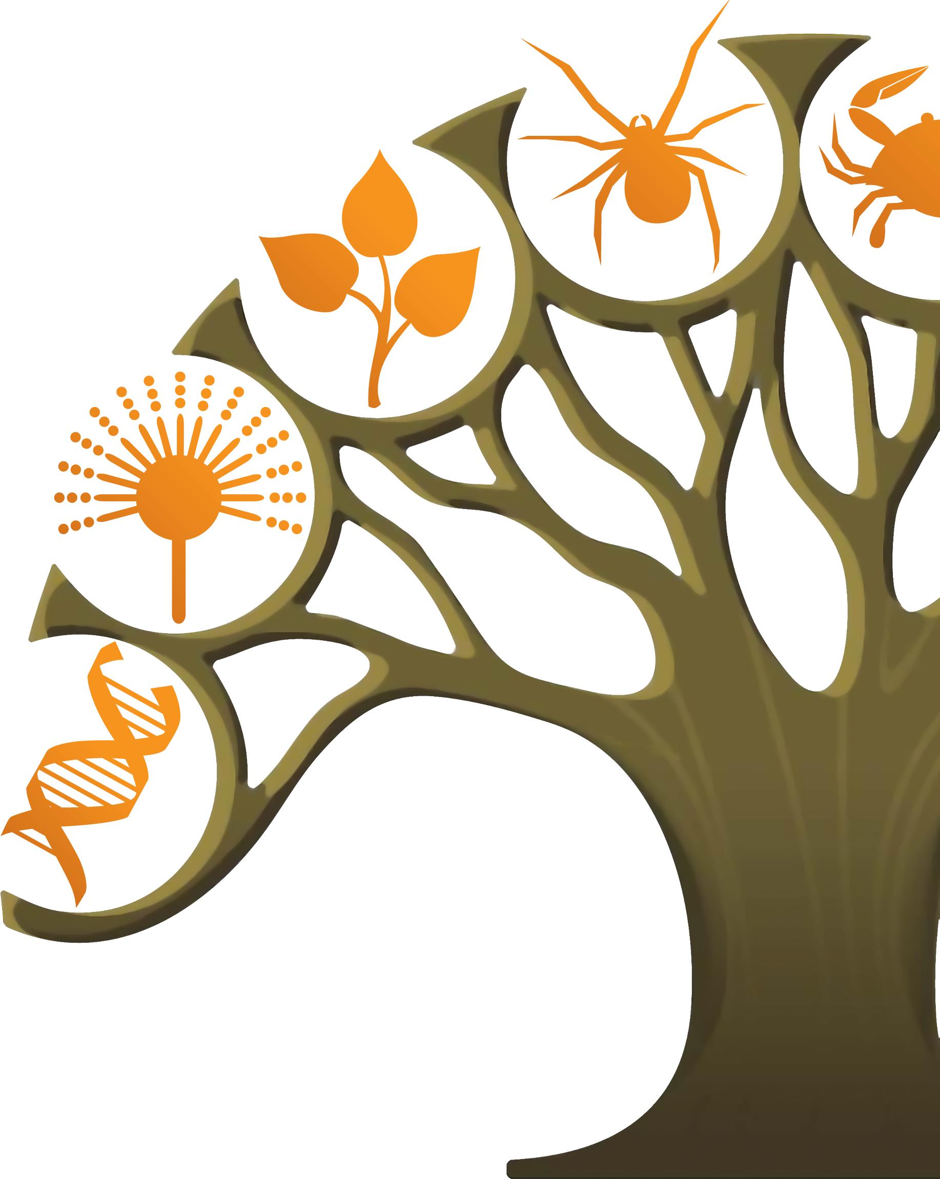 Camiseta De Biologia Bio06 Ref Car Interior Design